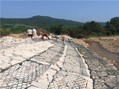 河道护坡绿格网